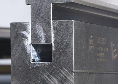 צילום של זב דפינה 13 שתול-70990