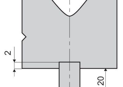 השתלת זנב דפינה לטרומף בפריזמה זנב 6070990